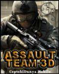 assaultteam3d_sml.jpg